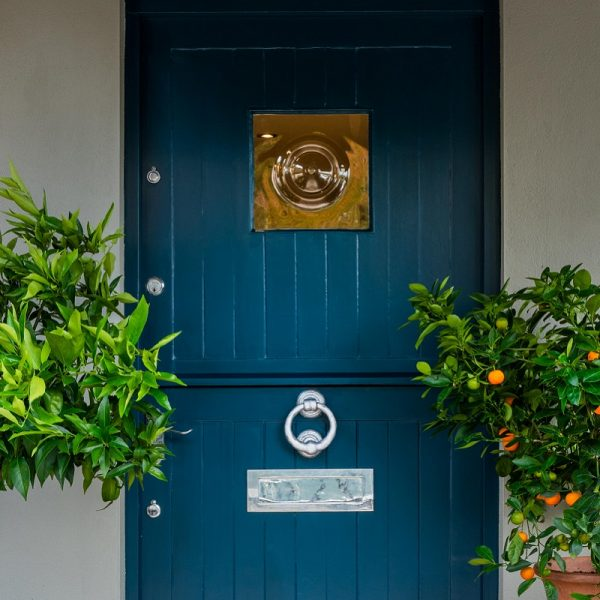 Deep Green Blue Grey painted door with plants on both sides