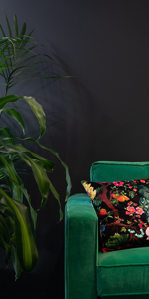 Dark bold coloured wall with green sofa in front, patterned cushion on sofa and plant to the left