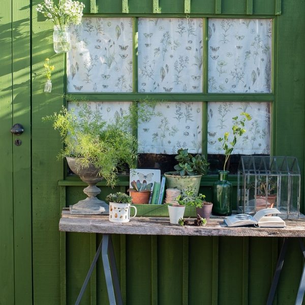 Passiflora painted shed with table in front