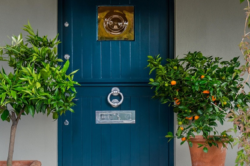 Deep green blue grey door in Exterior Eggshell surrounded by citrus trees