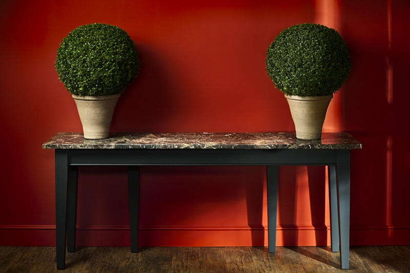 Burnt Orange Feature Wall with plants and table in front