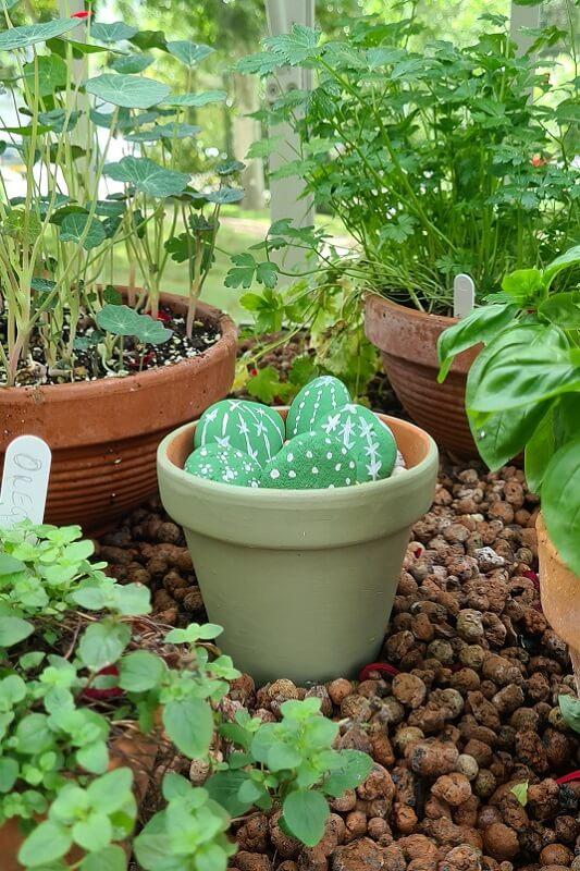 Homemade cactus garden